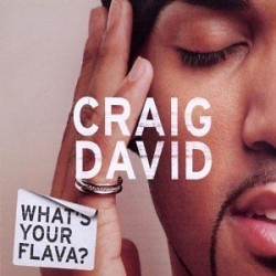 CD CRAIG DAVID - WHAT'S YOUR FLAVA?