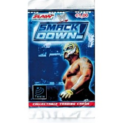 BUSTINA RAW SMACK DOWN 4 CARD